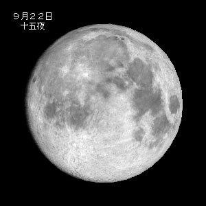 2010022a.jpg